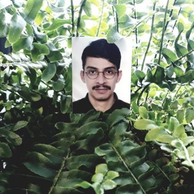Rodolfo_Acosta_Castro_Pflanze